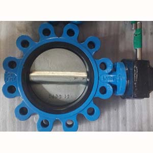 Lugged Butterfly Valve, Cast Iron, DN100, PN25