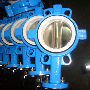 Split Wafer Butterfly Valve, DN50, SS316 Disc