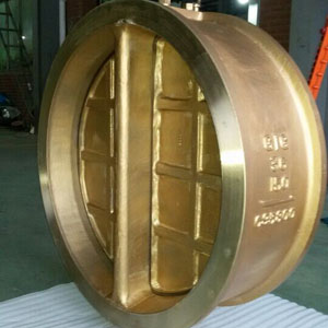 Integral Wafer Check Valve, FF, Dual Plate, CL150