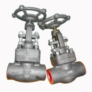 Socket Welded Globe Valve, ASTM A105, 3/4 Inch