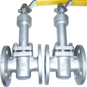 Lever Operated Plug Valve, A351 CF8, RF, 1 Inch