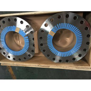 Welding Neck Flange, A182 F304L, 10IN, 900LBS, RF