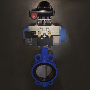 GGG40 Wafer Butterfly Valve, PN16, DN100, EPDM Seat