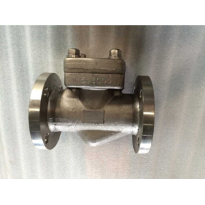 Position Check Valve, A182 F51, PN 150, Ring Type Joint