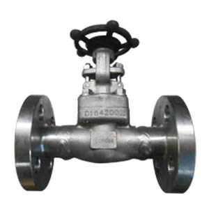 A182 F304L Gate Valve, 3/4 Inch, Class 600 LB, Flanged Ends
