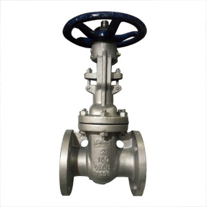 ASTM A216 WCB Wedge Gate Valve, 2 Inch, 150 LB
