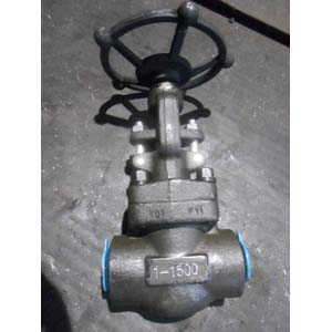 Butt Welded Globe Valve, A182 F11, 1500 LB, 1IN